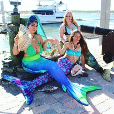 Mermaids At The Marina